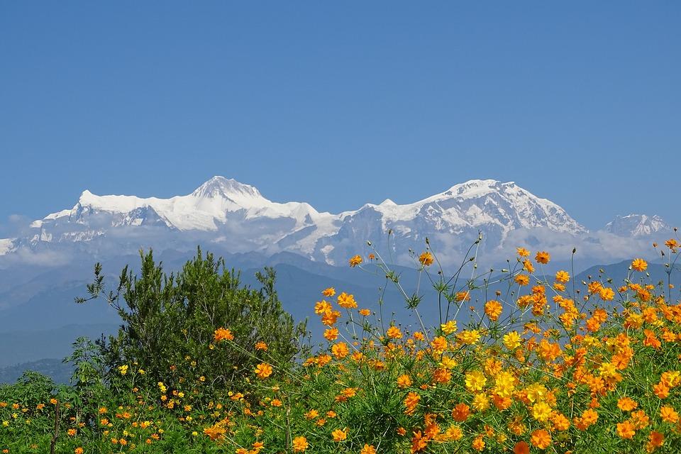 Image from Annapurna