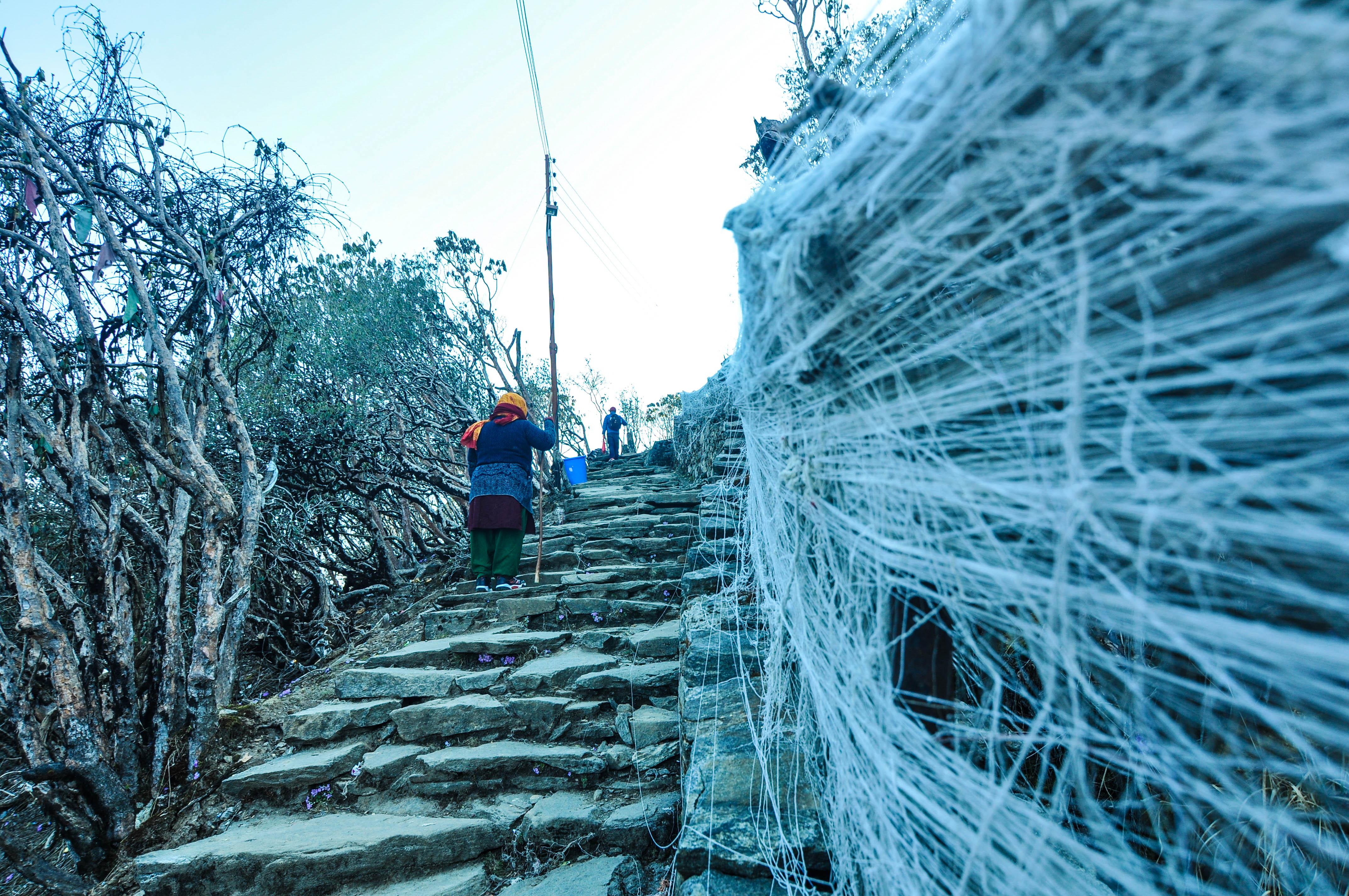Trail to Pathibhara Devi Temple
